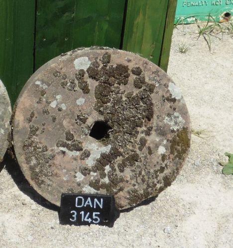 DAN 3145 (2)