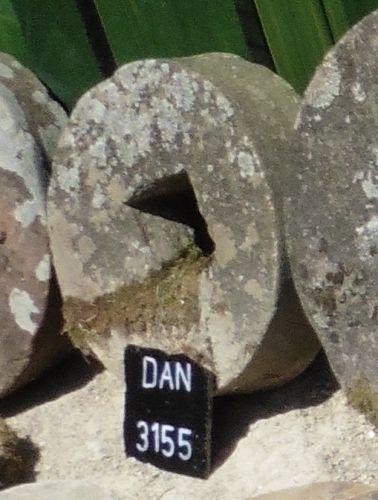 DAN 3155 (2)