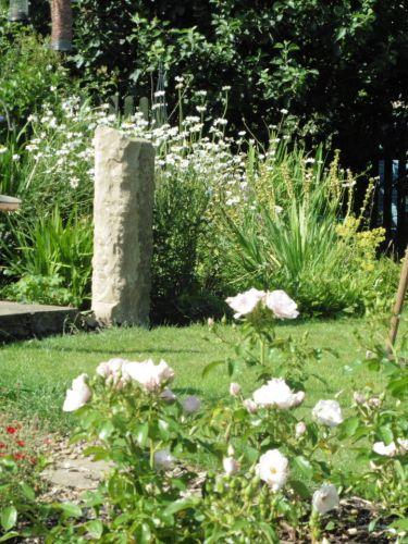 Dandelion Menhir In Situ